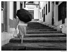 Sombreros ou parapluie?