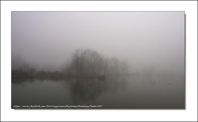 Les étangs de la vandoise (Roye)