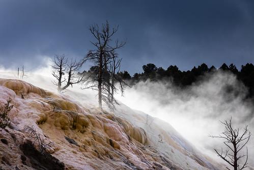 Mammoth hot spring of Yellowstone, Wyoming, USA.