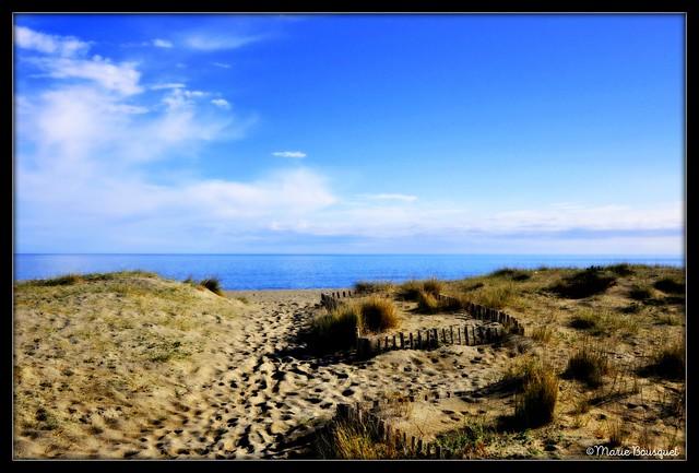 Ganivelles sur la plage de Sainte-Marie pour protéger la dune