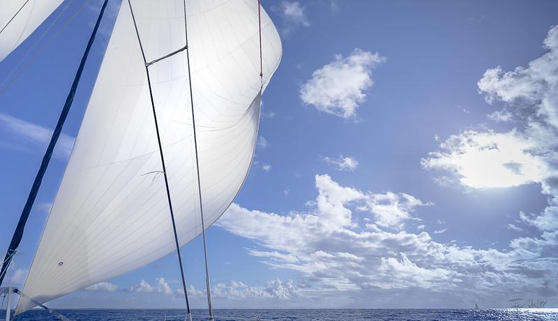 Fan7  - François Leroy | Guadeloupe - Catamaran