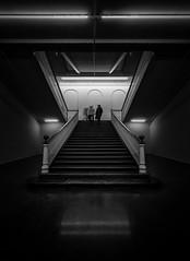 escalera de vida