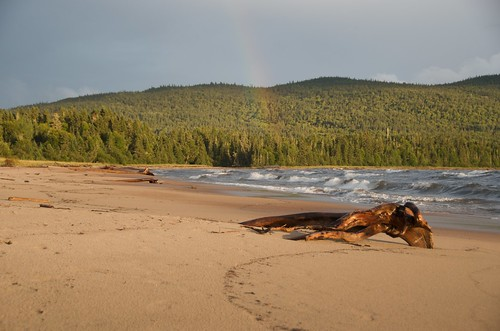Neys - Rainbow and Driftwood on the beach
