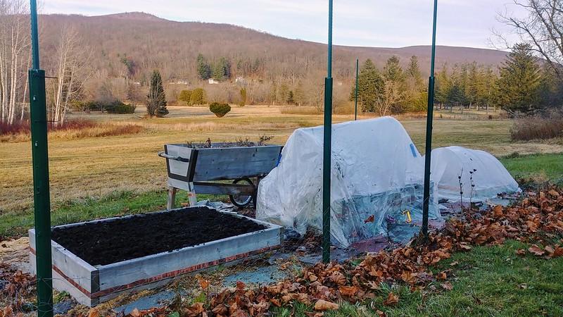 Deer Netting Removed