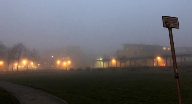 Post-silvester fog II