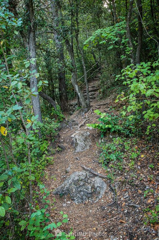 Escaleras en el sendero de Les Tosques a la Font de la Llódriga