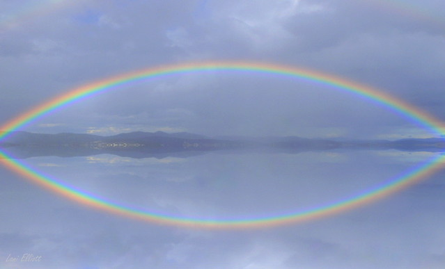 Rainbow Reflection.....HAPPY AUSTRALIA DAY !!!!