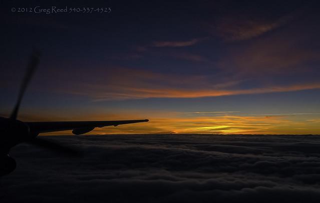 Dash of Dawn 2012