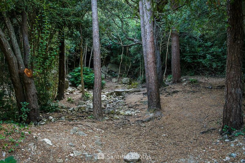 Font de la Llódriga, cabecera del río Brugent