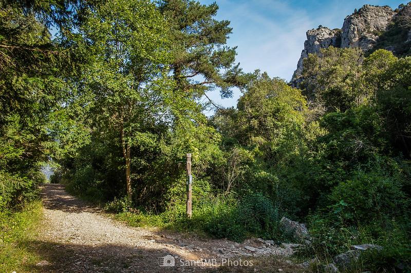 Camino a La Mussara y a Capafonts desde la Font de la Llódriga, cabecera del río Brugent