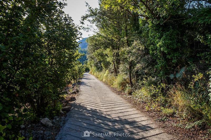 Primeros metros del camino a La Mussara por la Font de la Llúdriga