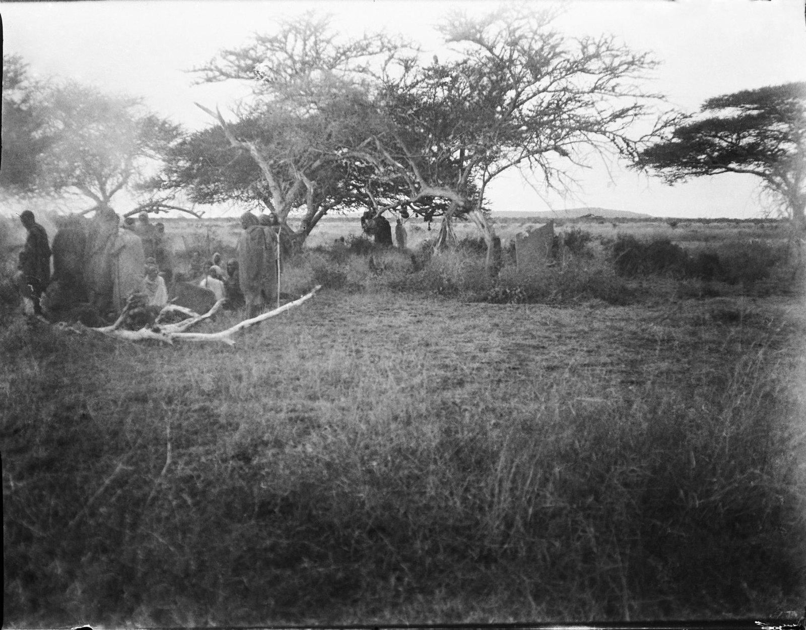 10. Хараре. Представители народа оромо на кладбище