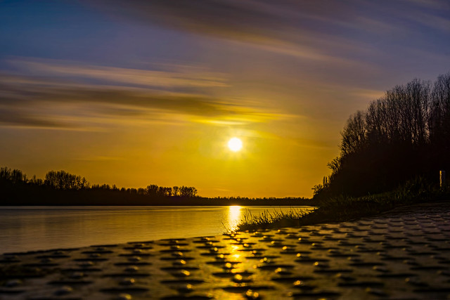 Golden Rhine...
