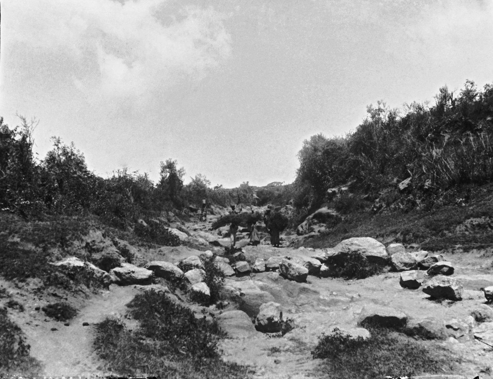 40. Дорога от речки Авдели к Харару (около Харара)