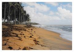 Waikkala CL - On the seashore 05