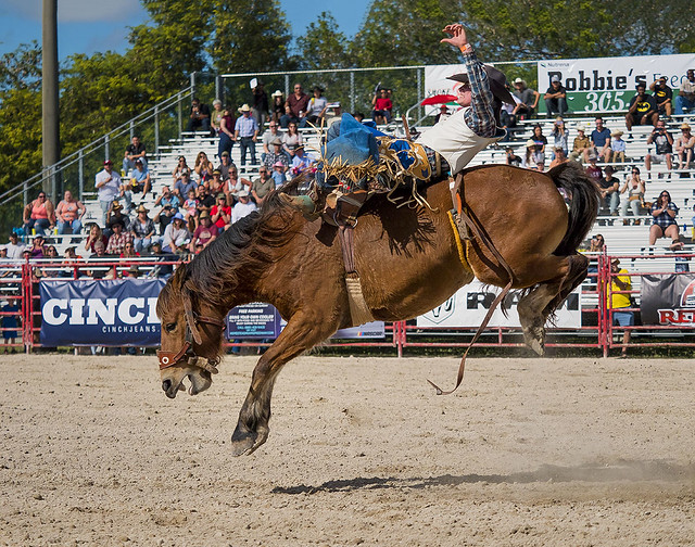 Airborn, Homestead Rodeo.