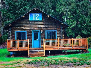 Day 25: cabin in the rain