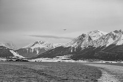 Ushuaia en blanco y negro