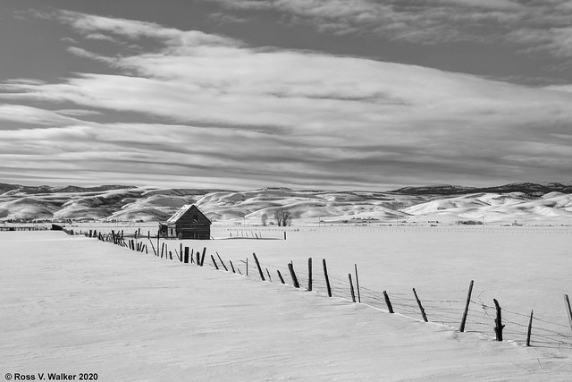 Little Barn, Big Valley - Black and White Version 3