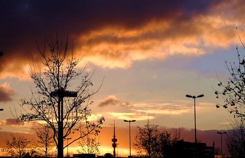 germany munich münchen bayern deutschland bavaria euroindustriepark trees sunset sky storm clouds sonnenuntergang himmel wolken bäume sturm ©allrightsreserved freimann