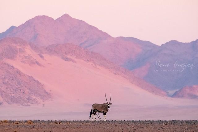 Unpublished Namibia 🇳🇦 2019