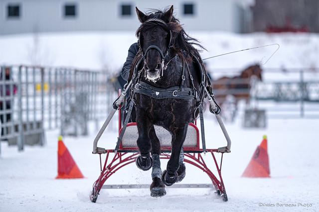 Winter Derby 2020 #2 (Explored)
