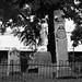 "<p><a href=""https://www.flickr.com/people/jrmorgan/"">jrpopfan</a> posted a photo:</p>  <p><a href=""https://www.flickr.com/photos/jrmorgan/49443226208/"" title=""Olivewood Cemetery""><img src=""https://live.staticflickr.com/65535/49443226208_dfce5db433_m.jpg"" width=""160"" height=""240"" alt=""Olivewood Cemetery"" /></a></p>  <p>Photos from an expedition to Olivewood Cemetery in Houston</p>"