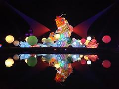 Light festival Rhenen dierenpark Netherlands