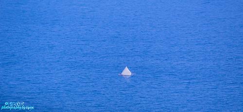 Sailing through endless blue