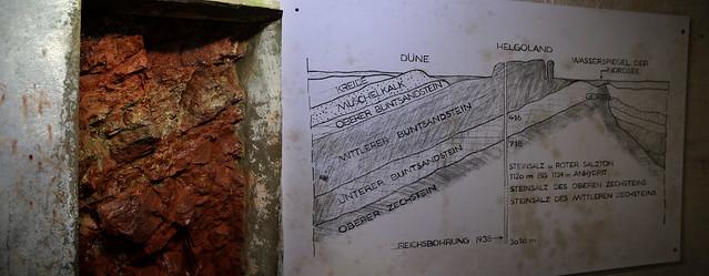 Dinosaur fossils have been encountered in the Buntsandstein