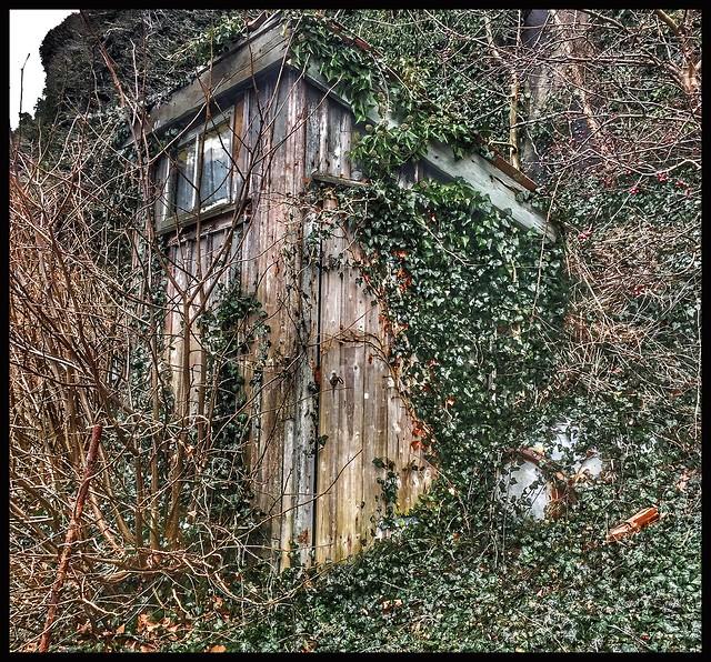 The secret house...