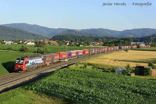 Tren de semirremolques en Kollmarsreute.