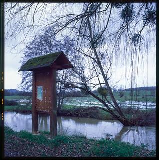 La rivière Nièvre