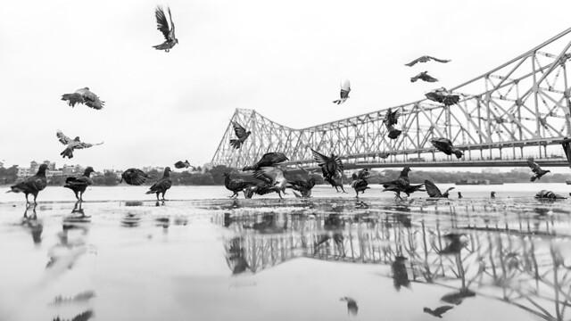 Kolkata - 2019