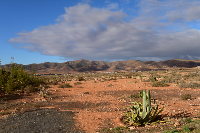 Fuerteventura, Islas Canarias, Spain, Nikon_D810, January_2020_964
