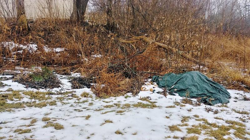 Yard Waste Piles in Winter