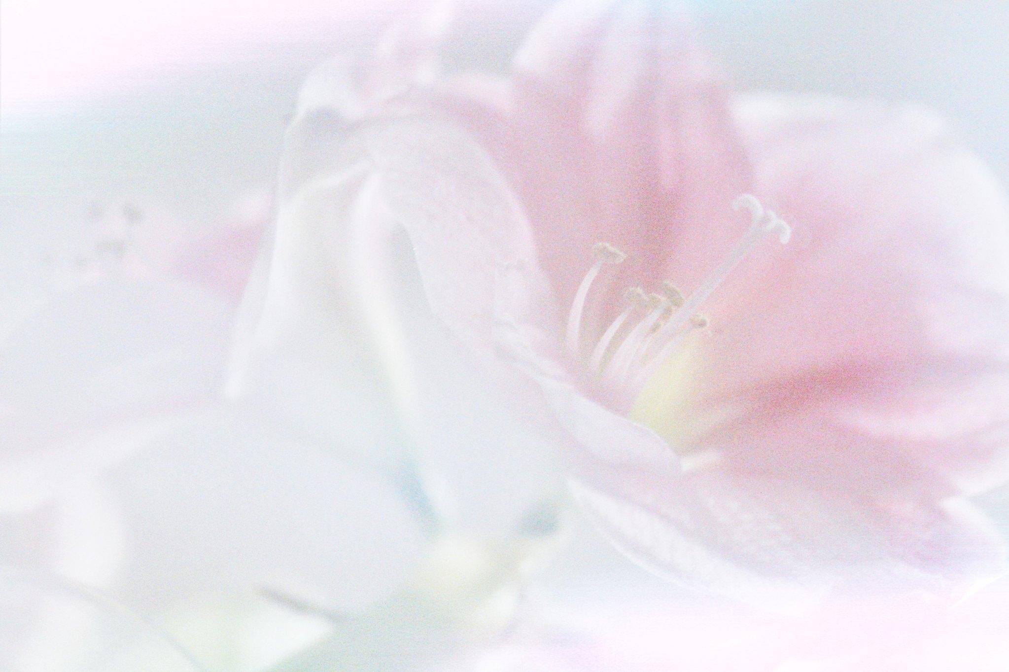 PicsArt_01-26-09.36.28