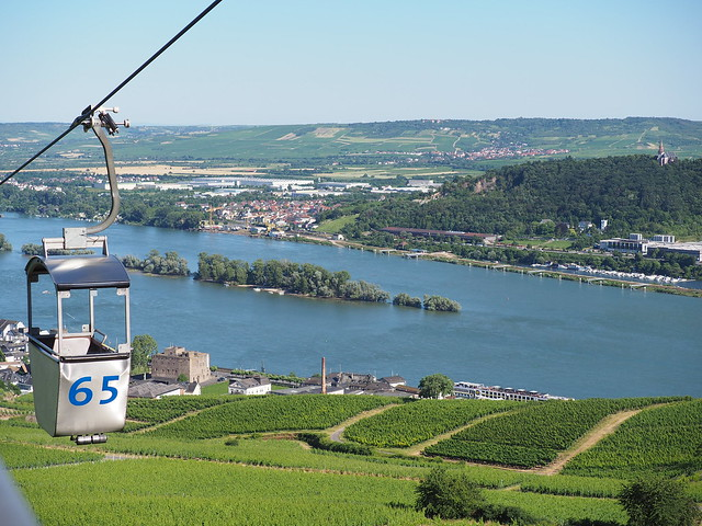 Germany - Cable Car in Ruedesheim on the River Rhine - The other side of the River shows Bingen