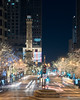 THE MAGMILE