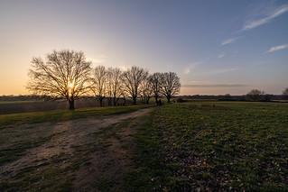Sunset - Egelsberg, Krefeld Traar 2020-01-26