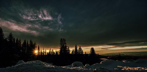 Mesa winter