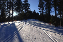 Sněhová situace - východní Pustevny