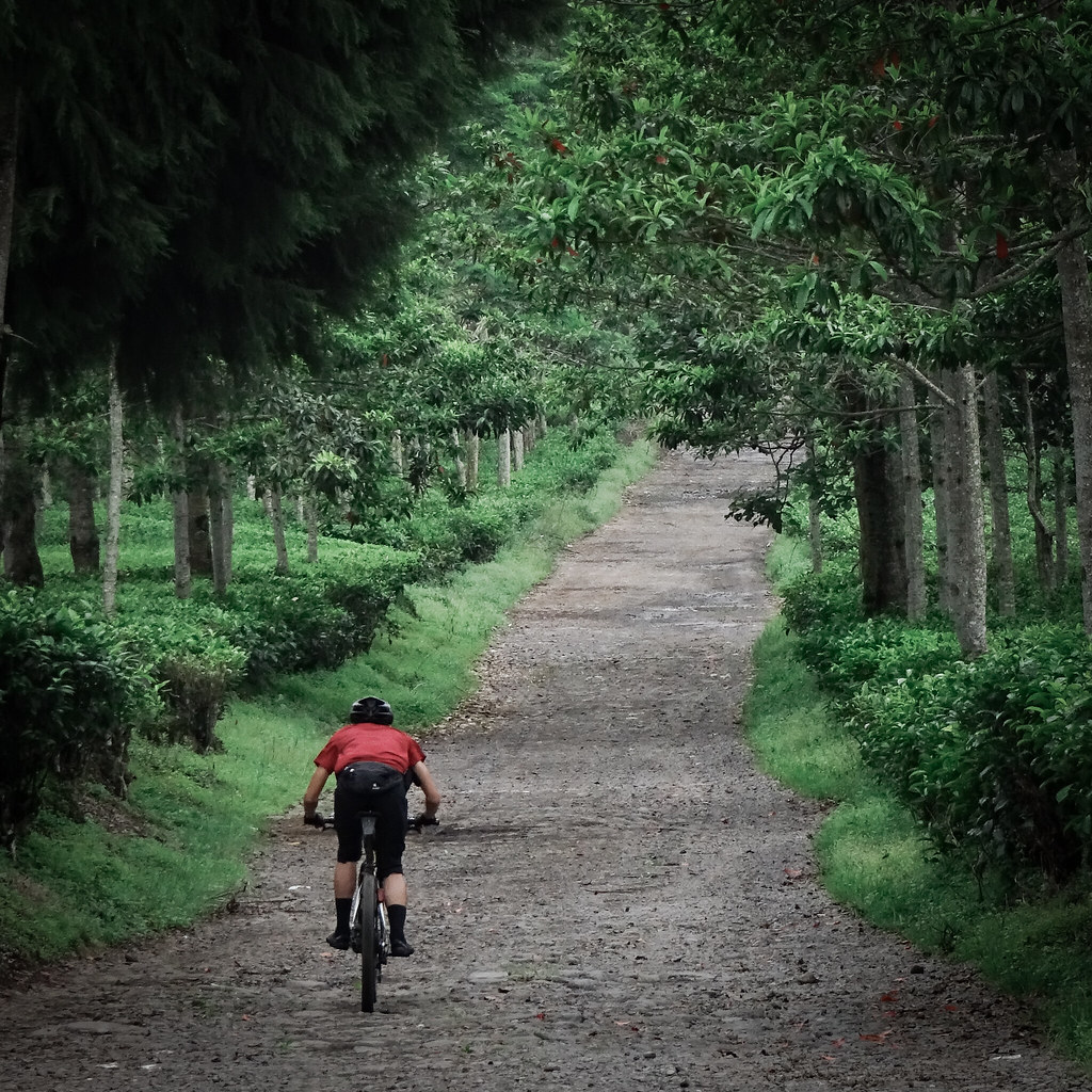 Pangalengan Exploring: 2020 Chinese New Year Ride