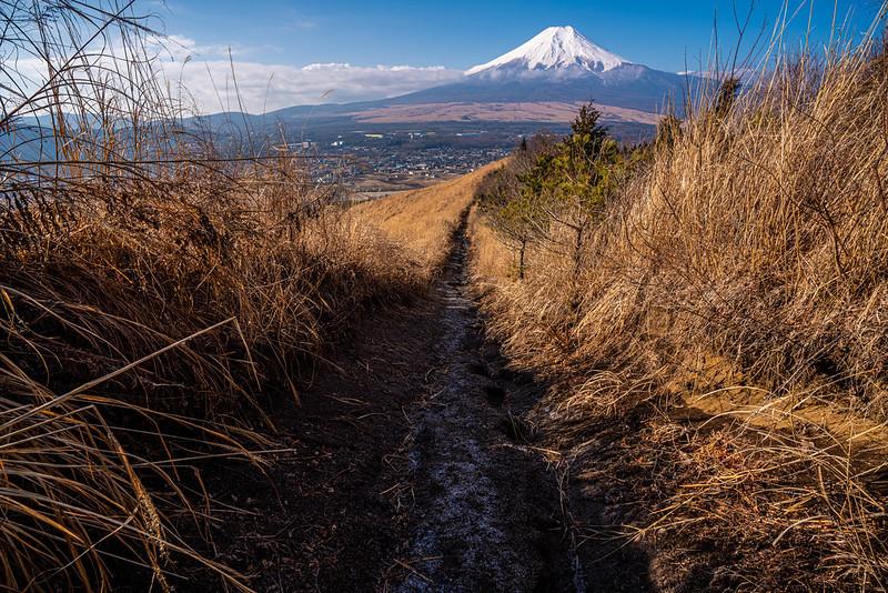 杓子山から富士山を見る