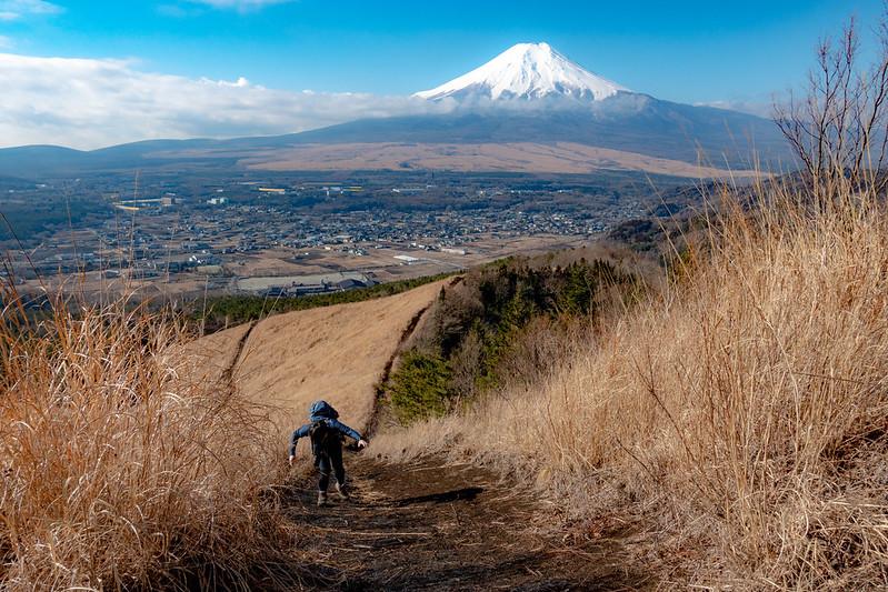 杓子山から富士山