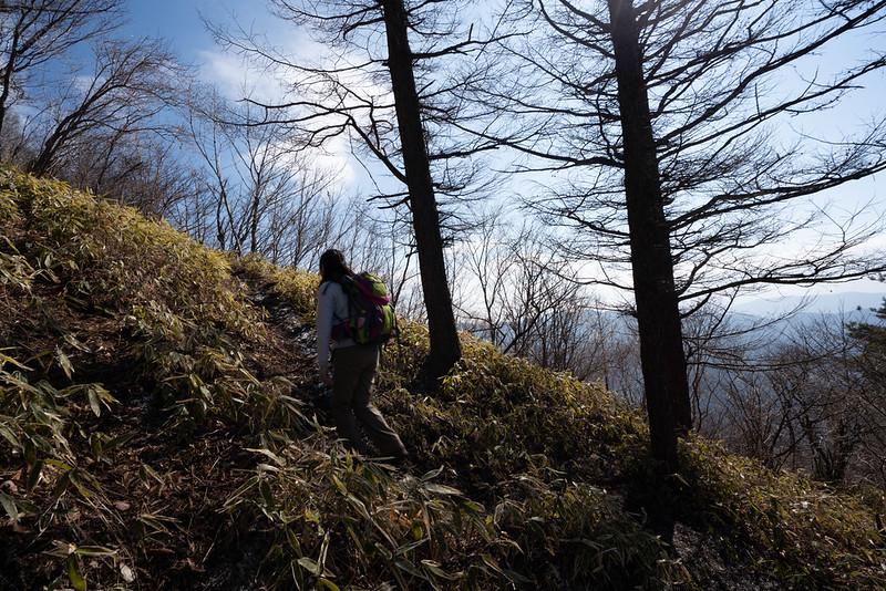 杓子山の登り