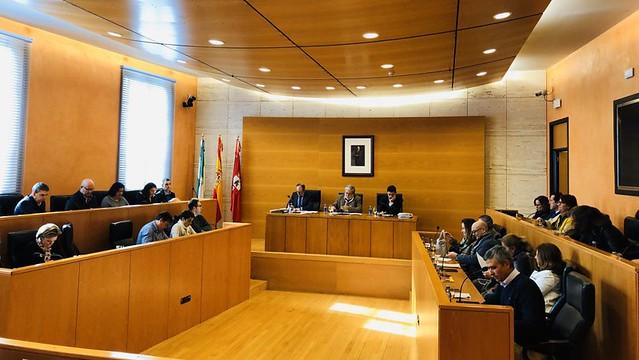 Pleno Municipal Dos Hermanas