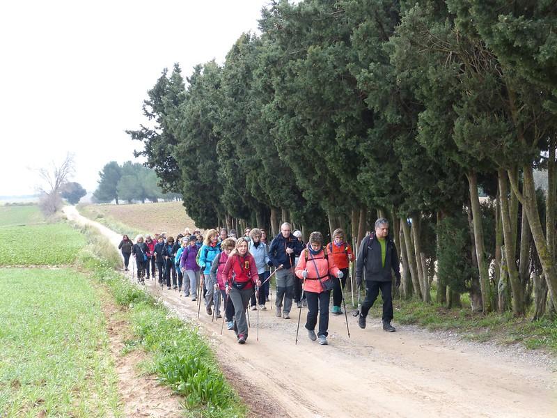 Espai Rural Els Gallecs en Marxa Nòrdica