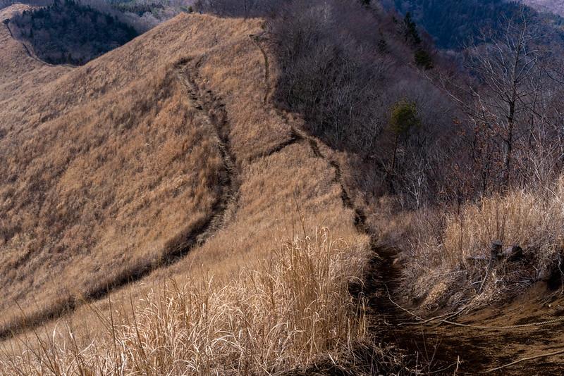 杓子山 下山