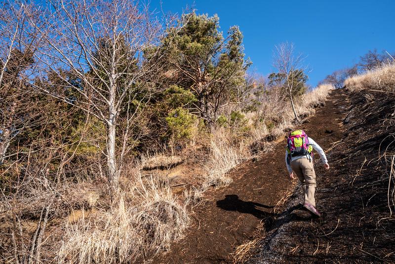 杓子山の急斜面